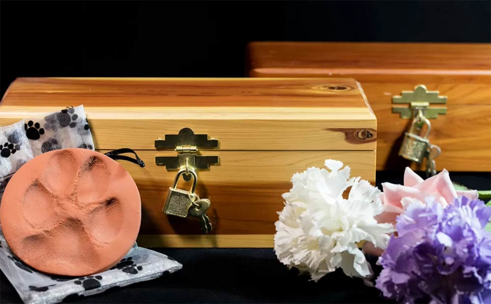 A Basic Guide to Pet Cremation